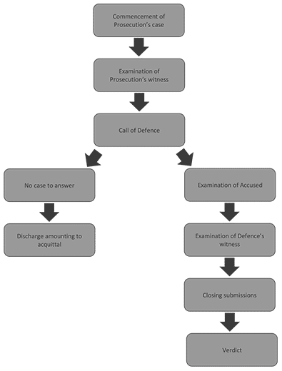 WS CriminalProcess Article5 Overview Silvester